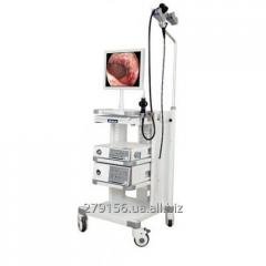 Endoscopes