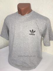 T-shirt light gray Adidas