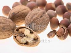 The nut is Greek