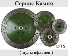 Detachable disk on granite Multiflanets Service of
