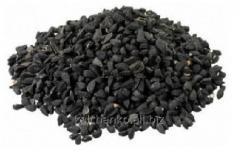 Chernushka seeds Chalcedony