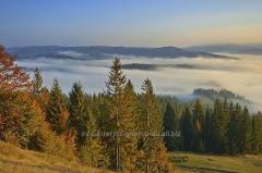 Фотография Горы в тумане, Карпаты ID 202