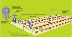 Equipment for floor cultivation of broilers