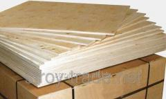 Plywood water-resistant birch