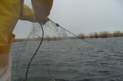 Net linen