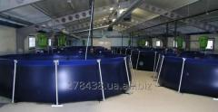 Flexible tanks, capacities of N \, software, p