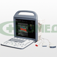 Portable ultrasound scanners