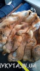 Fur of fox
