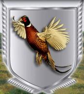 Суточный молодняк фазана и красной куропатки