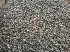 Coal EXPERT Anthracite — the Sunflower seed