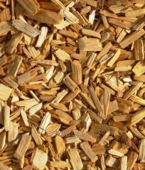 Spill pine