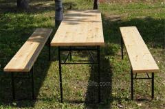 Комплект мебели ДЕСАНТ из сосны