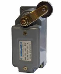 Terminal switch