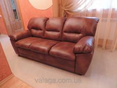 Brown sofa for the living room sofa