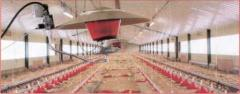 Heater infrared for SIERRA poultry farms