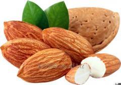 Almonds IRBIS LTD /  Мускатный орех целый