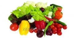 Organiske matvarer