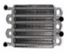 Heat exchanger of bitermicheskiya FERROLI