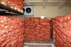 Овощехранилища,фруктохранилища.Монтаж,пусконаладка
