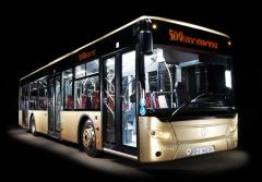 City A-183N1 bus