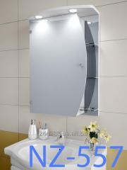 Hinged, mirror case for NZ-557 bathroom