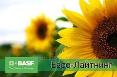 Гербицид Евро-Лайтинг (БАСФ)