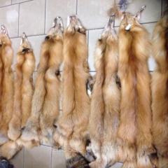 Natural fur