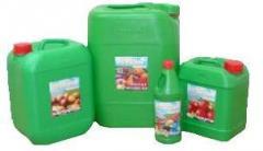 Удобрение Реастим – кукуруза 3 л/га при