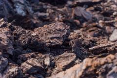 """Brown coal of brand """"B"""" 07135"""