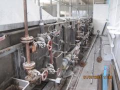 Туннельный пастеризатор ,  Венгрия ,  24м