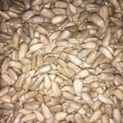Candy store kernel sunflower sunflower seeds