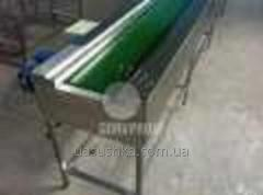 Conveyors for the food industry