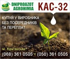 Fertilizers for cabbage