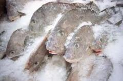 Мороженая рыба, оптом