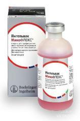 Вакцина Микофлекс 50 доз №24 (Boehringer)