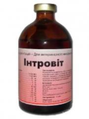 Витамины Интровит 100мл