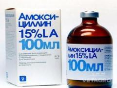 Антибиотик Амоксициллин ЛА 15% 100мл INVESA