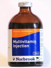 Витамины Мультивитамин 100мл №12 (72) (NORBROOK)