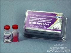 Вакцина Мультифел-4 №10