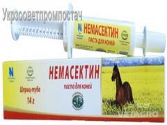 Препарат Немасектин паста для лошадей 14г