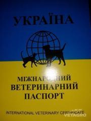 Паспорт ветеринарный универсальный