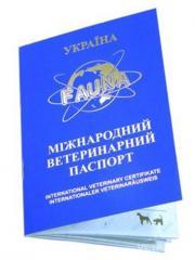 Паспорт международный (синий)