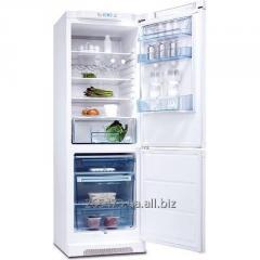 Резина к холодильнику Electrolux ERB 3600 W. Есть