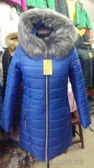 Куртка женская зимняя модель Парка Софи