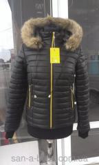 Invierno de las mujeres de la chaqueta corta.