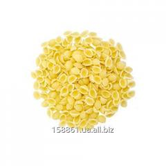 Pasta Shell small 1 kg