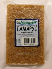 The frozen forage for fishes Gamma Russian. Vacuum