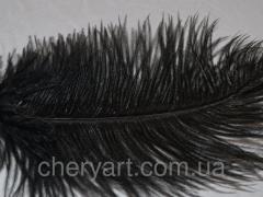 Перо страуса натуральное
