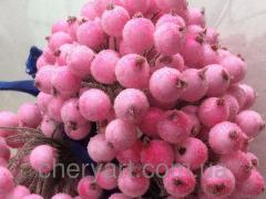 Калина в сахаре розовая