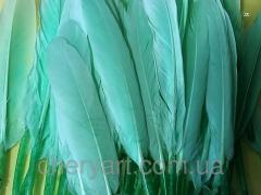 Перья натуральные 5-15см